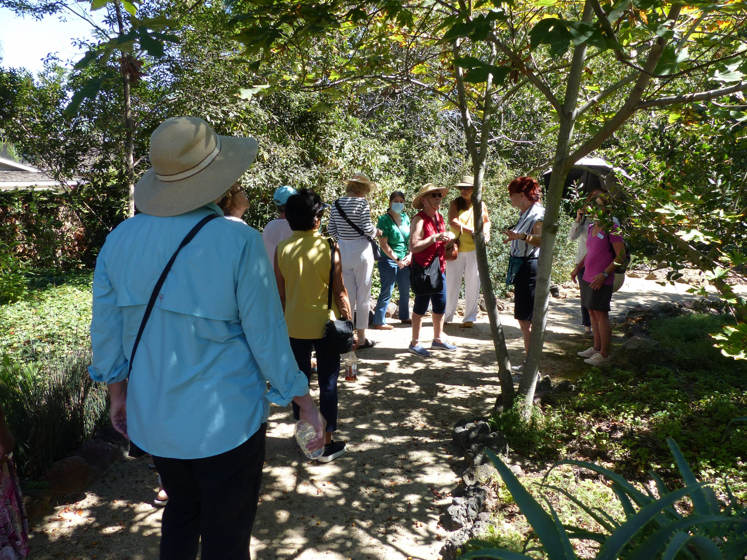 In the Native Garden at Rancho Los Alamitos
